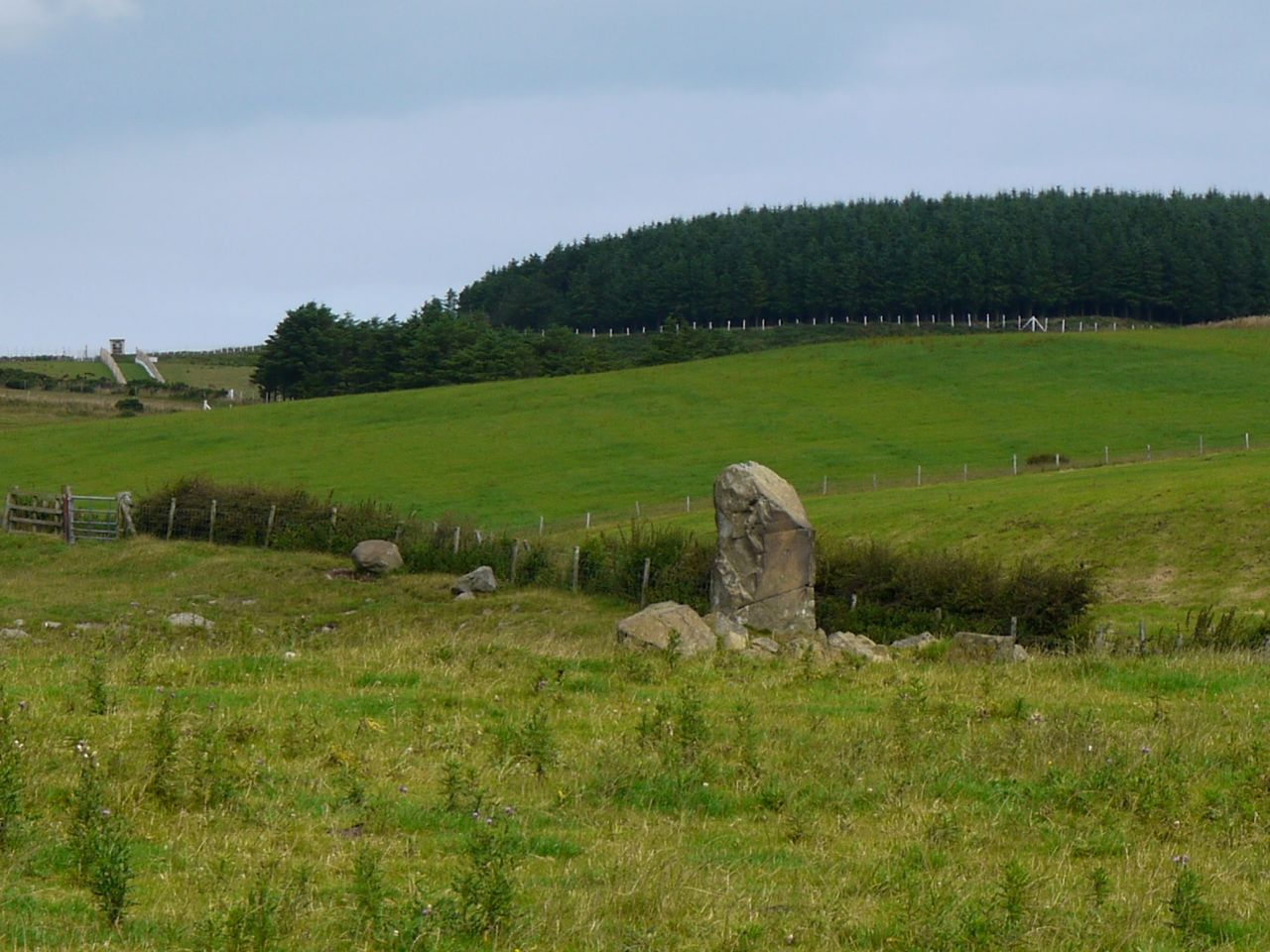 Knock and Maize standing stone