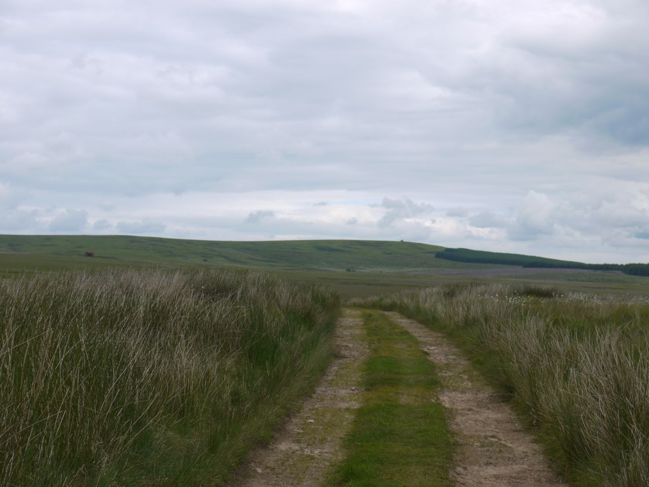 The Herring Road, Twinlaw in the distance