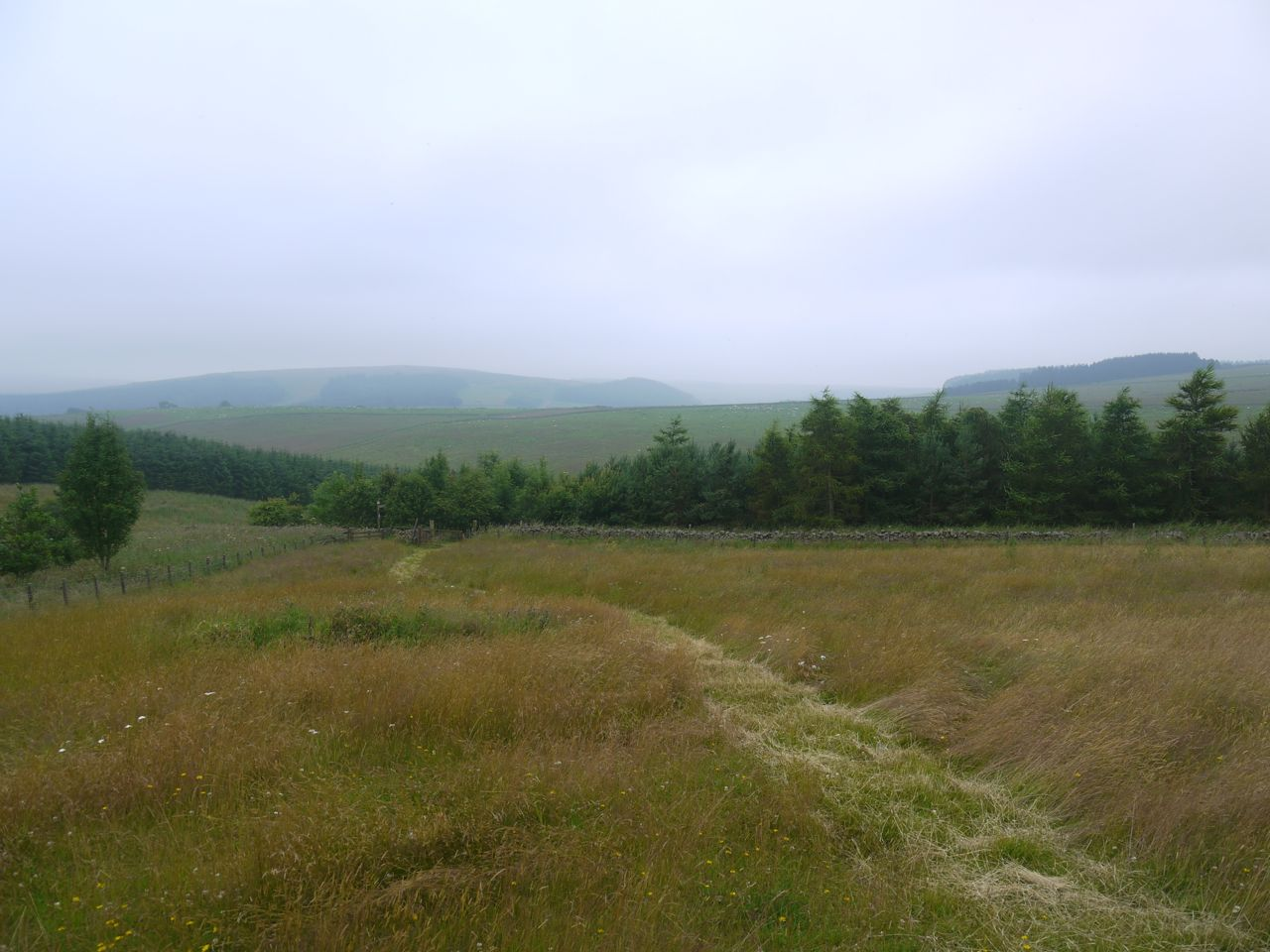 Path to Whiteburn