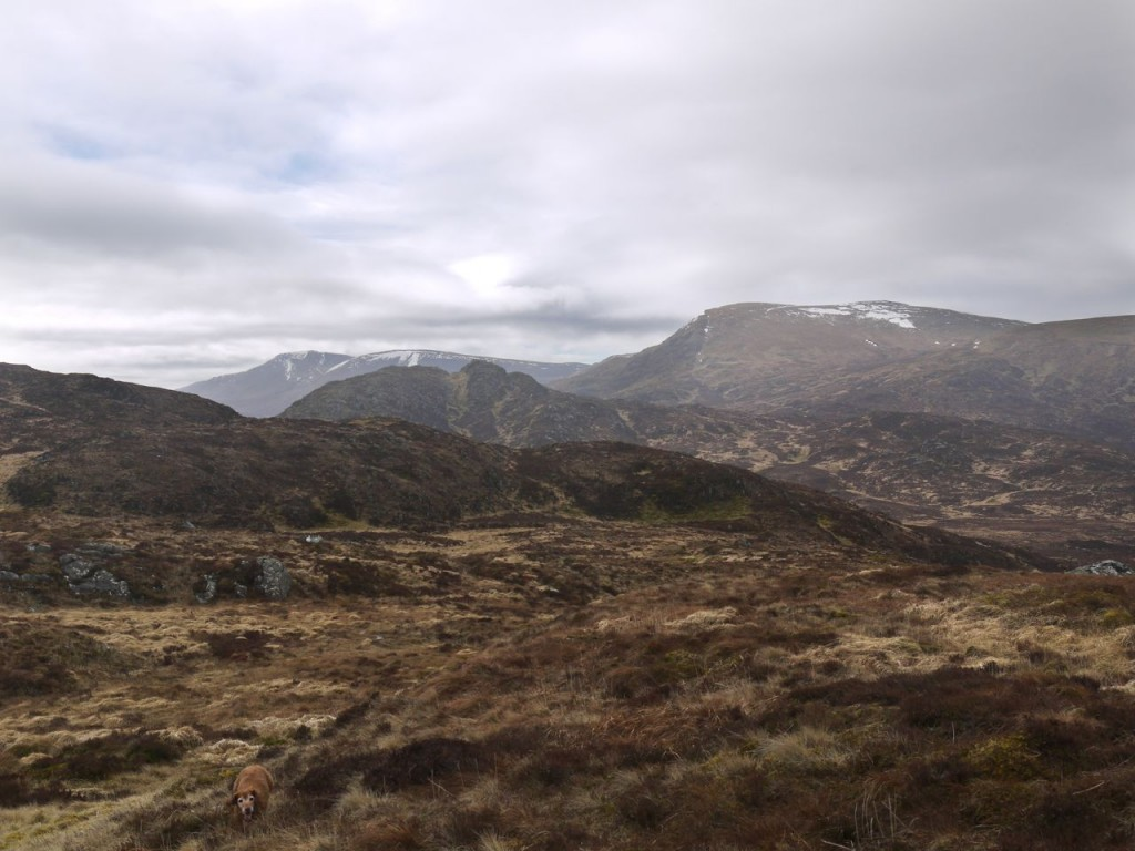 Craigmasheenie and the hills of the Awful Hand from Shiel Hill
