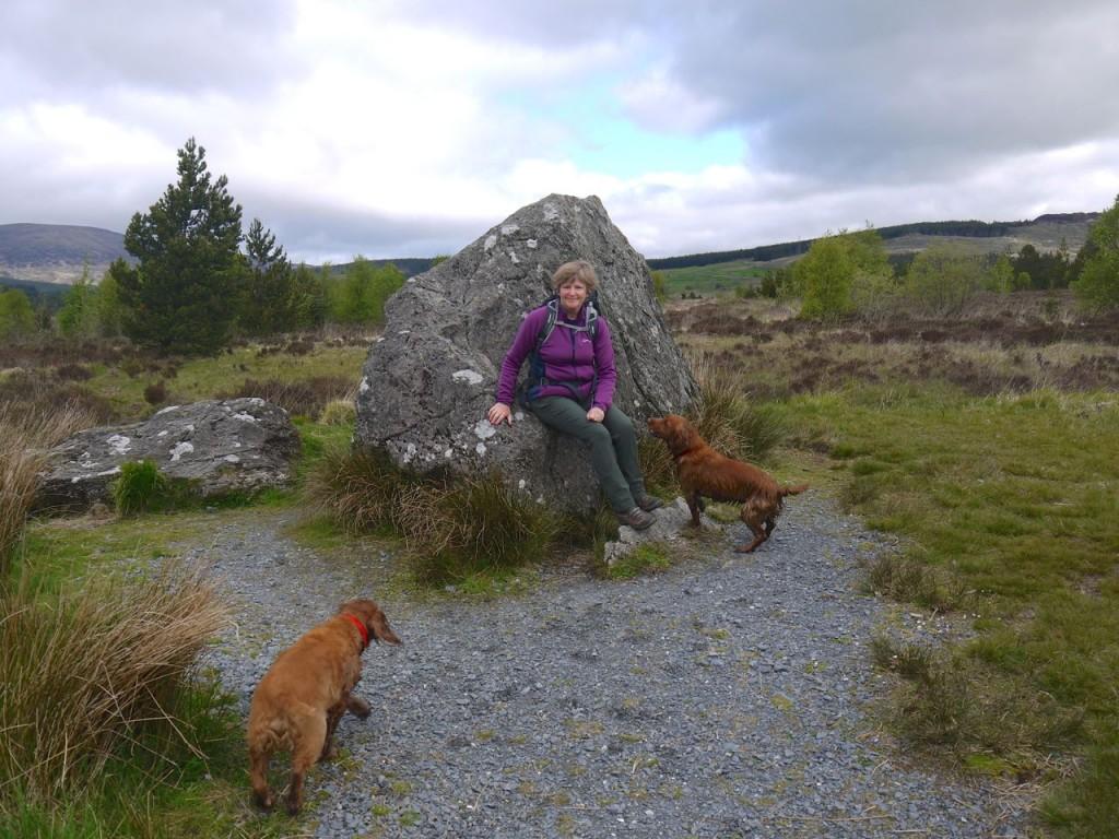 Broce's stone, Raploch Moss
