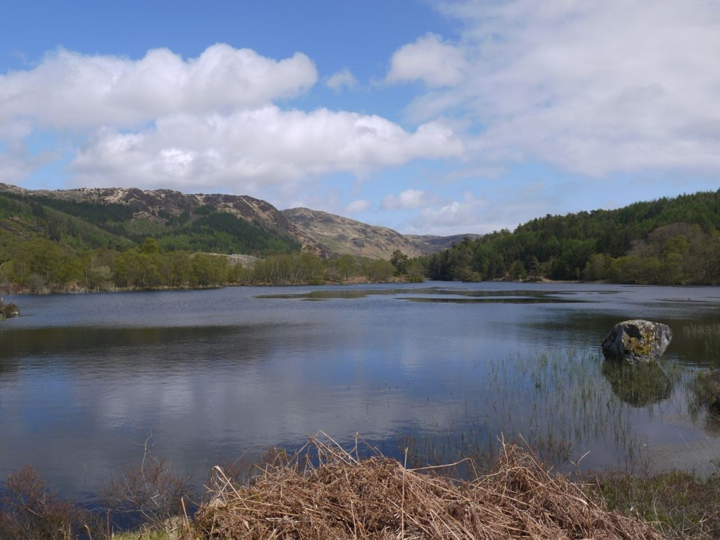 Loch Trool-2