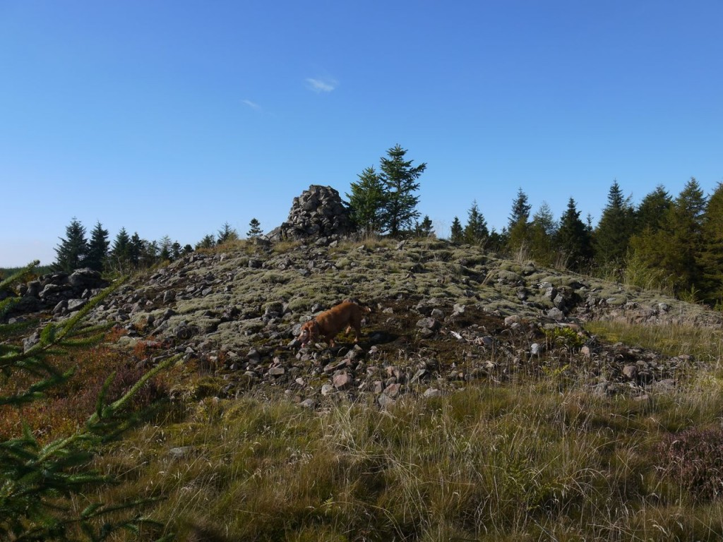 Mid Cairn
