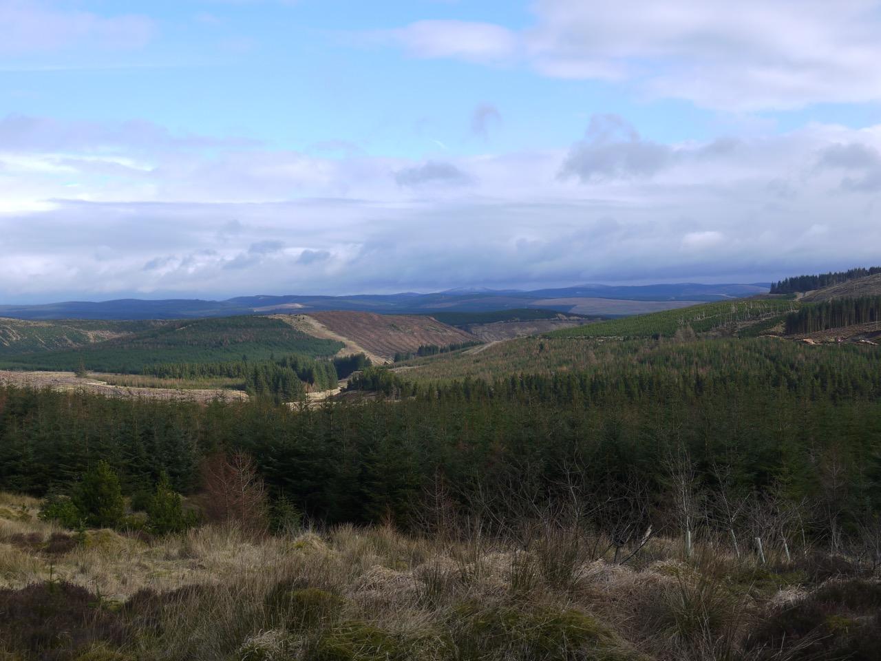 Distant Wisp Hill