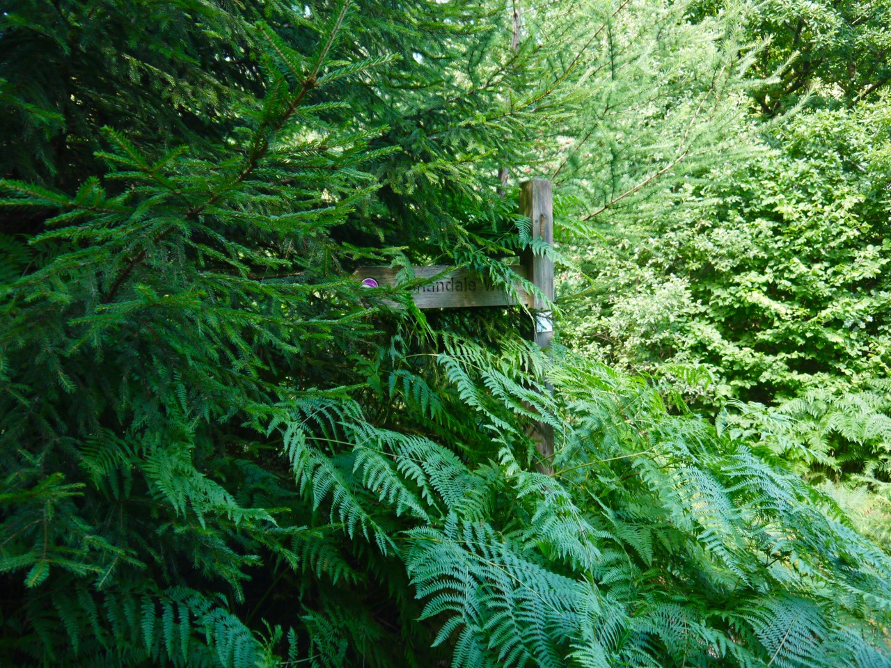 Hidden signpost