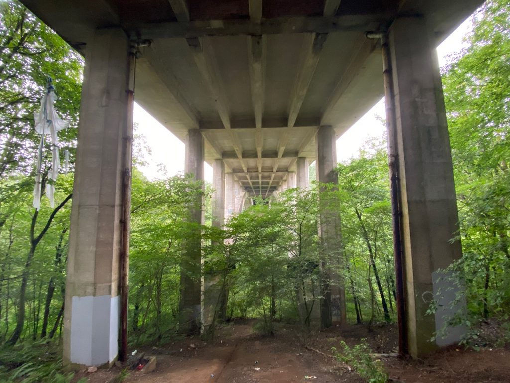 A76 viaduct towering over trees
