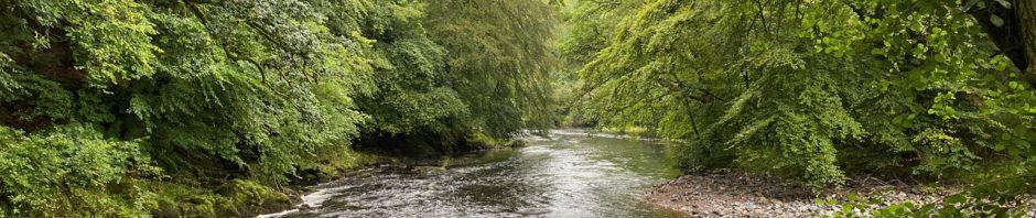 River Ayr near Catrine