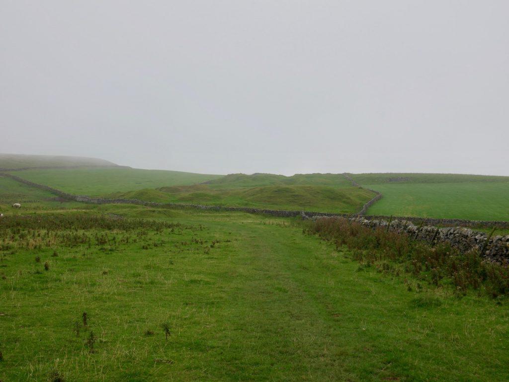 Old Moor